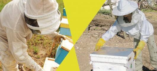 пчеларски магазин